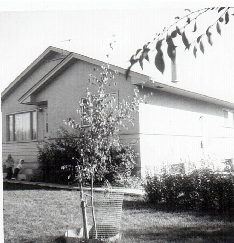 Leier house       3457 11th St-1971